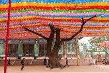 Jogyesa Kore Budist Tapınağı3.jpg